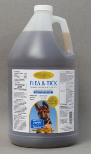Flea and Tick Shampoo 1Gallon